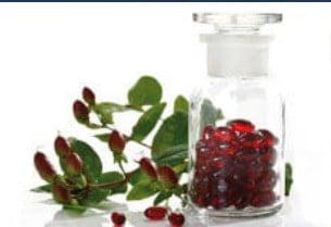 Betula Pendula Leaf Extract