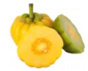 Briaunotosios garcinijos vaisių ekstraktas