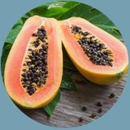 Papajos vaisių ekstraktas