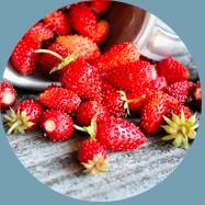 Žemuogės vaisių ekstraktas